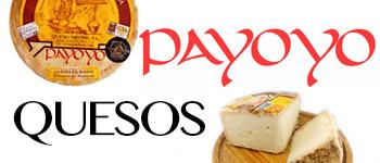 QUESOS PAYOYO