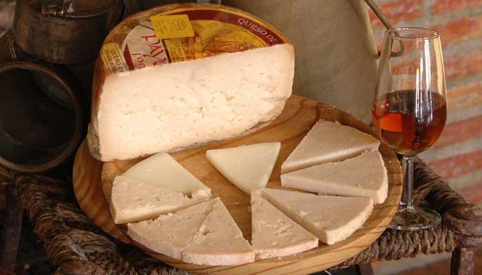 8 beneficios del queso payoyo de cabra para nuestra salud jamones sime n - Beneficios queso de cabra ...