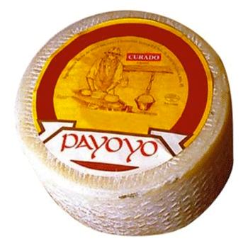 queso-payoyo-de-oveja-curado