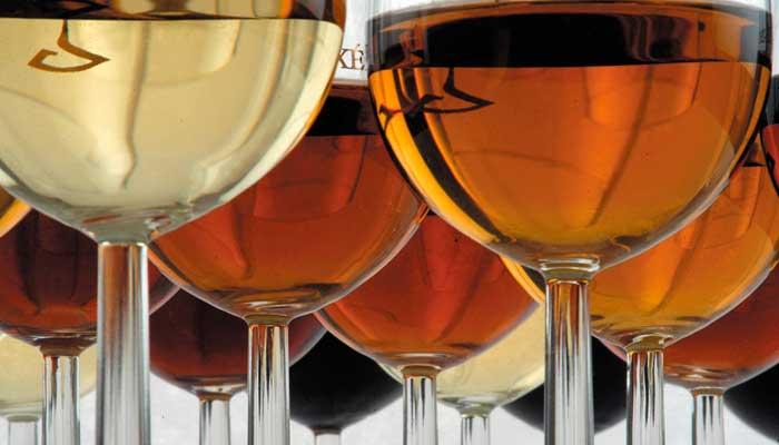 vinos-jerez-fino-amontillado-oloroso-palo-cortado-4